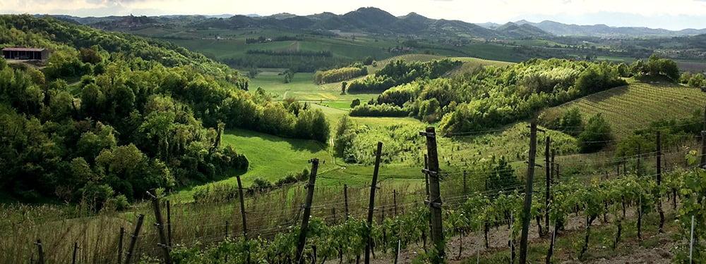 Vicara panorama vin Non Dos
