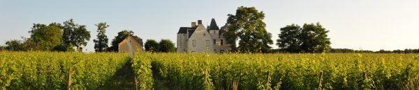 Château De La Roche En Loire