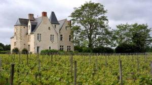 Château De La Roche Em Loire